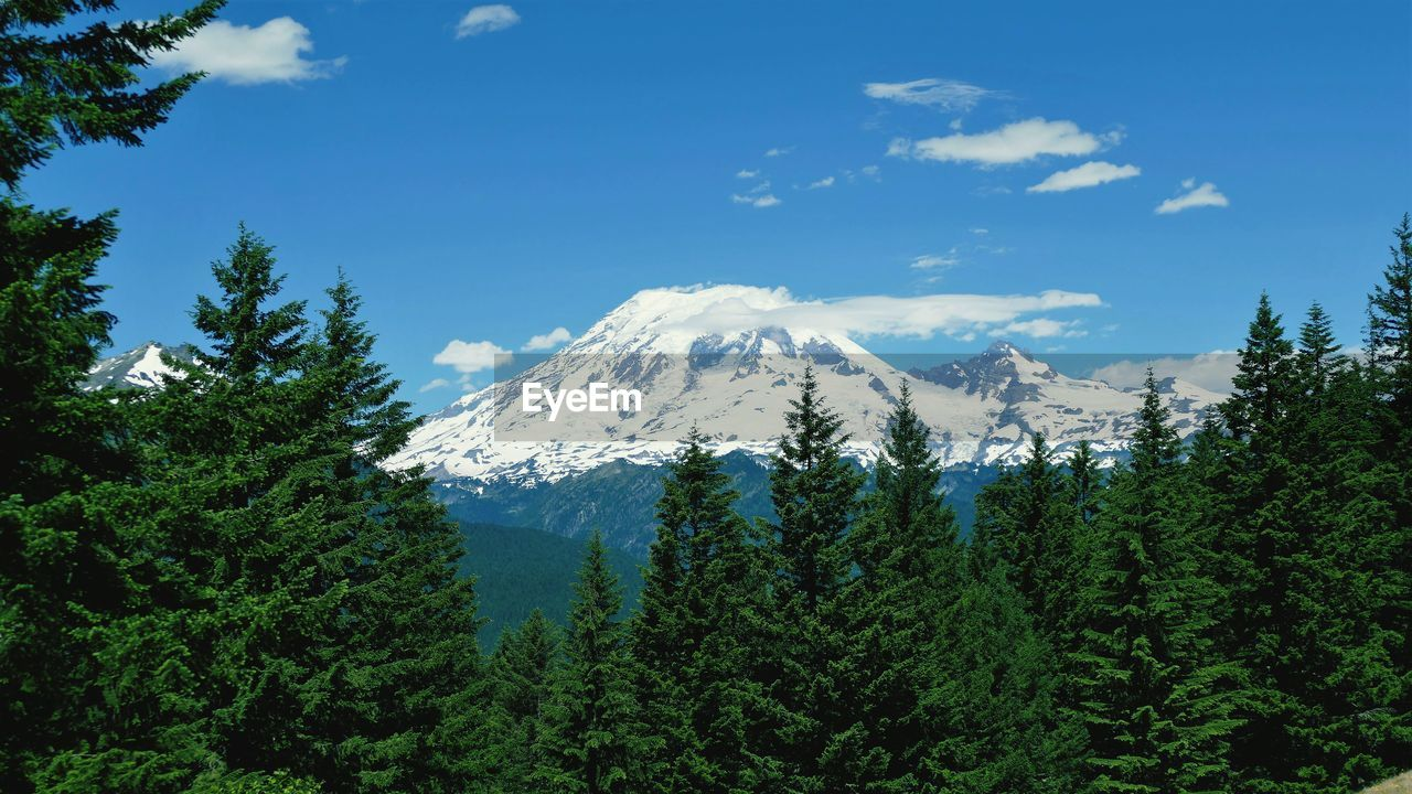 SCENIC VIEW OF SNOWCAPPED MOUNTAINS