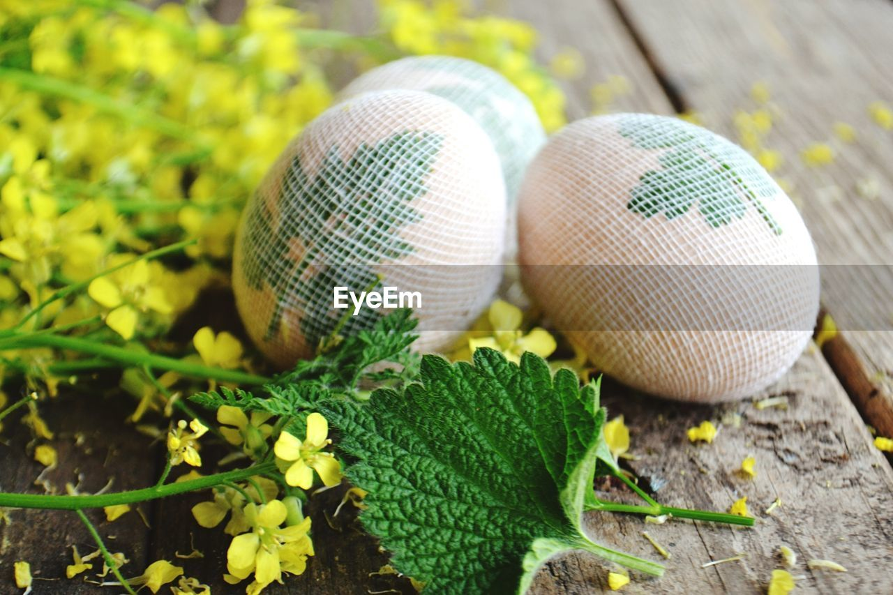 close-up, green color, no people, day, focus on foreground, still life, nature, leaf, high angle view, plant, outdoors, food, food and drink, holiday, wood - material, plant part, celebration, ball, egg, selective focus