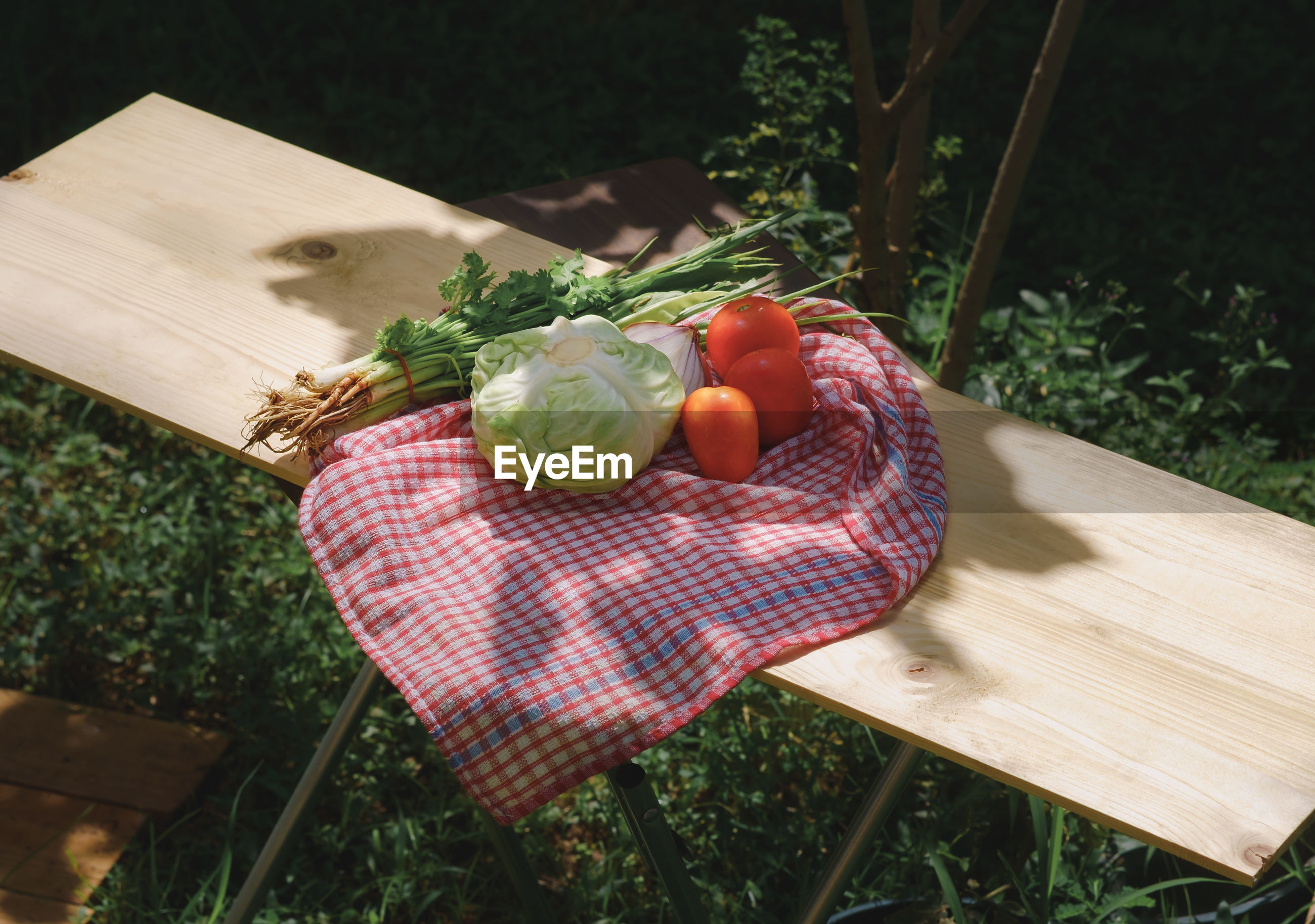 High angle view of vegetables with napkin on table at back yard