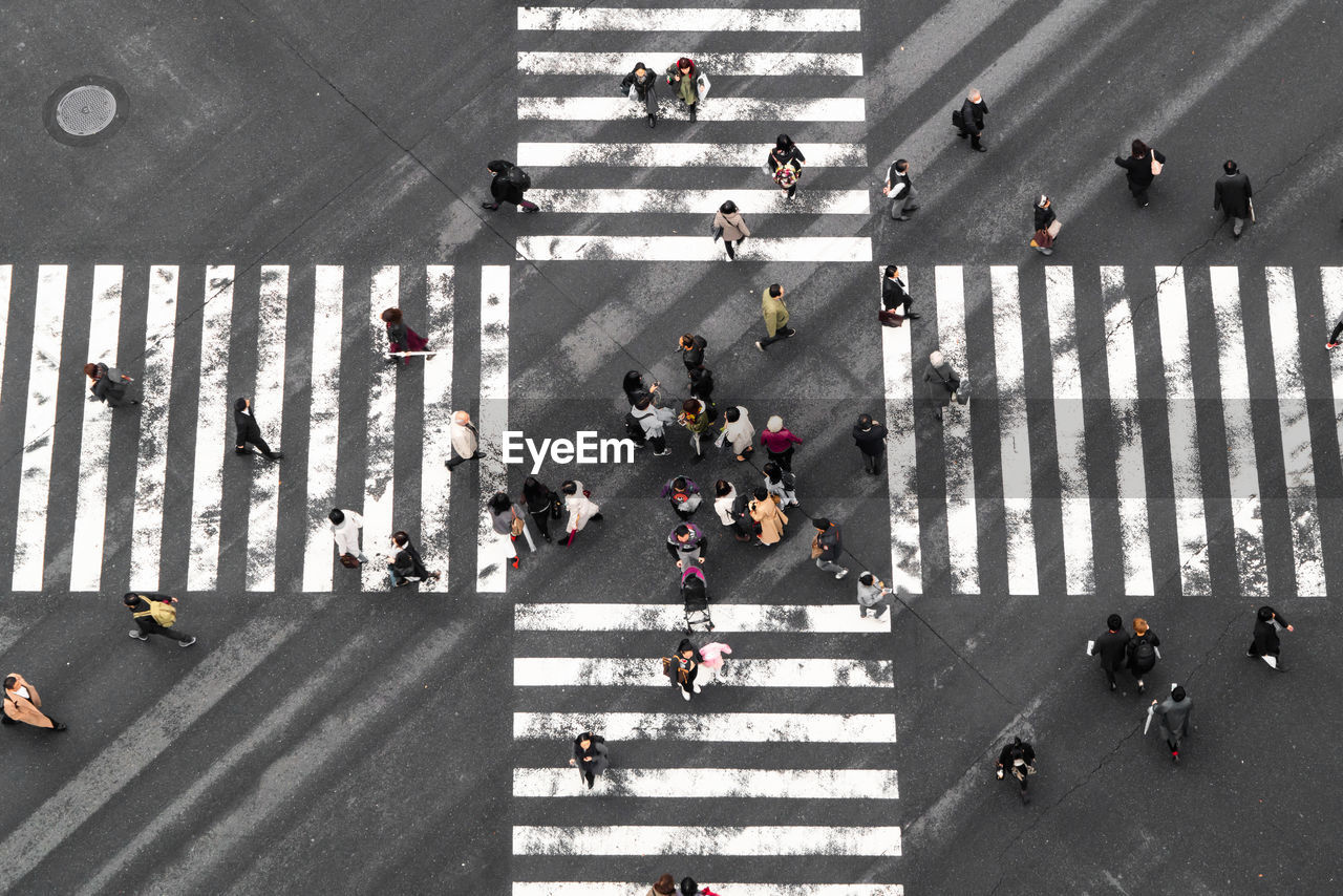 large group of people, group of people, crowd, city, road, street, crosswalk, high angle view, road marking, crossing, marking, transportation, zebra crossing, walking, sign, real people, city street, symbol, city life, outdoors, dividing line