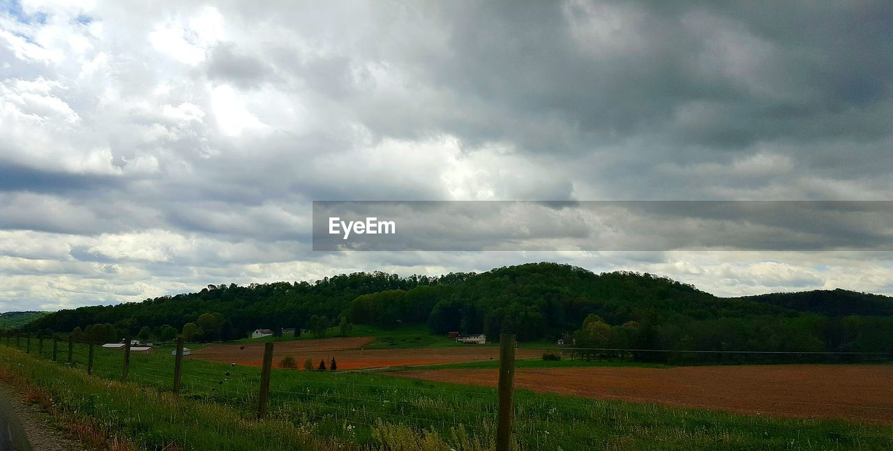 sky, cloud - sky, field, tree, landscape, nature, scenics, beauty in nature, tranquility, no people, agriculture, tranquil scene, grass, day, outdoors, storm cloud