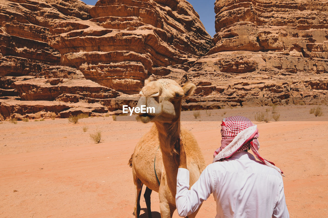 Arabic man seen from behind with a camel in a desert.
