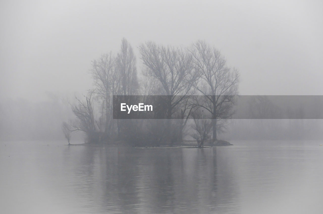 water, fog, tree, beauty in nature, tranquility, waterfront, tranquil scene, bare tree, scenics - nature, no people, plant, non-urban scene, lake, cold temperature, nature, day, idyllic, sky, hazy, isolated