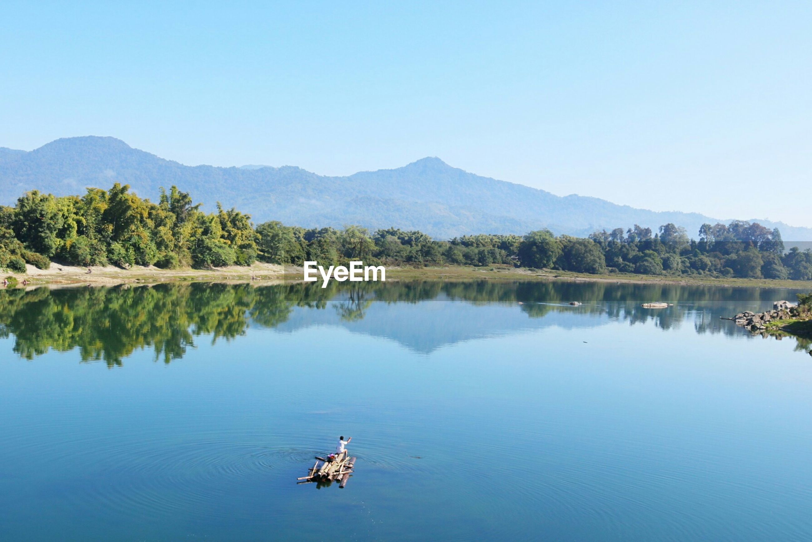 reflection, nature, water, lake, scenics, beauty in nature, mountain, tranquil scene, animal themes, tree, day, sky, tranquility, outdoors, no people, clear sky, animals in the wild, one animal, bird, water bird