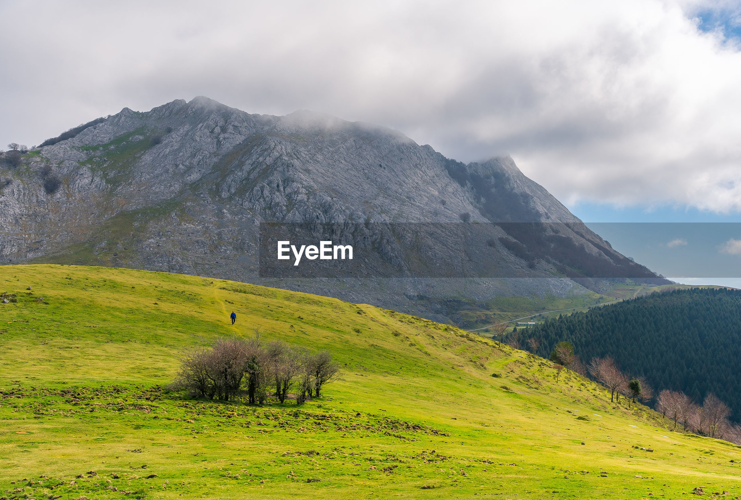 VIEW OF GREEN LANDSCAPE WITH MOUNTAIN RANGE