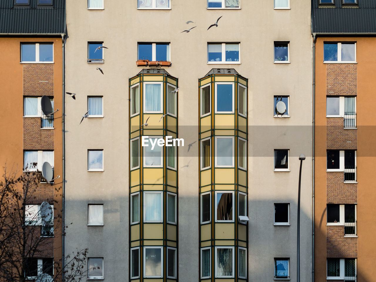 window, built structure, building exterior, architecture, building, no people, residential district, low angle view, glass - material, day, city, full frame, outdoors, backgrounds, side by side, apartment, sunlight, nature, repetition, in a row