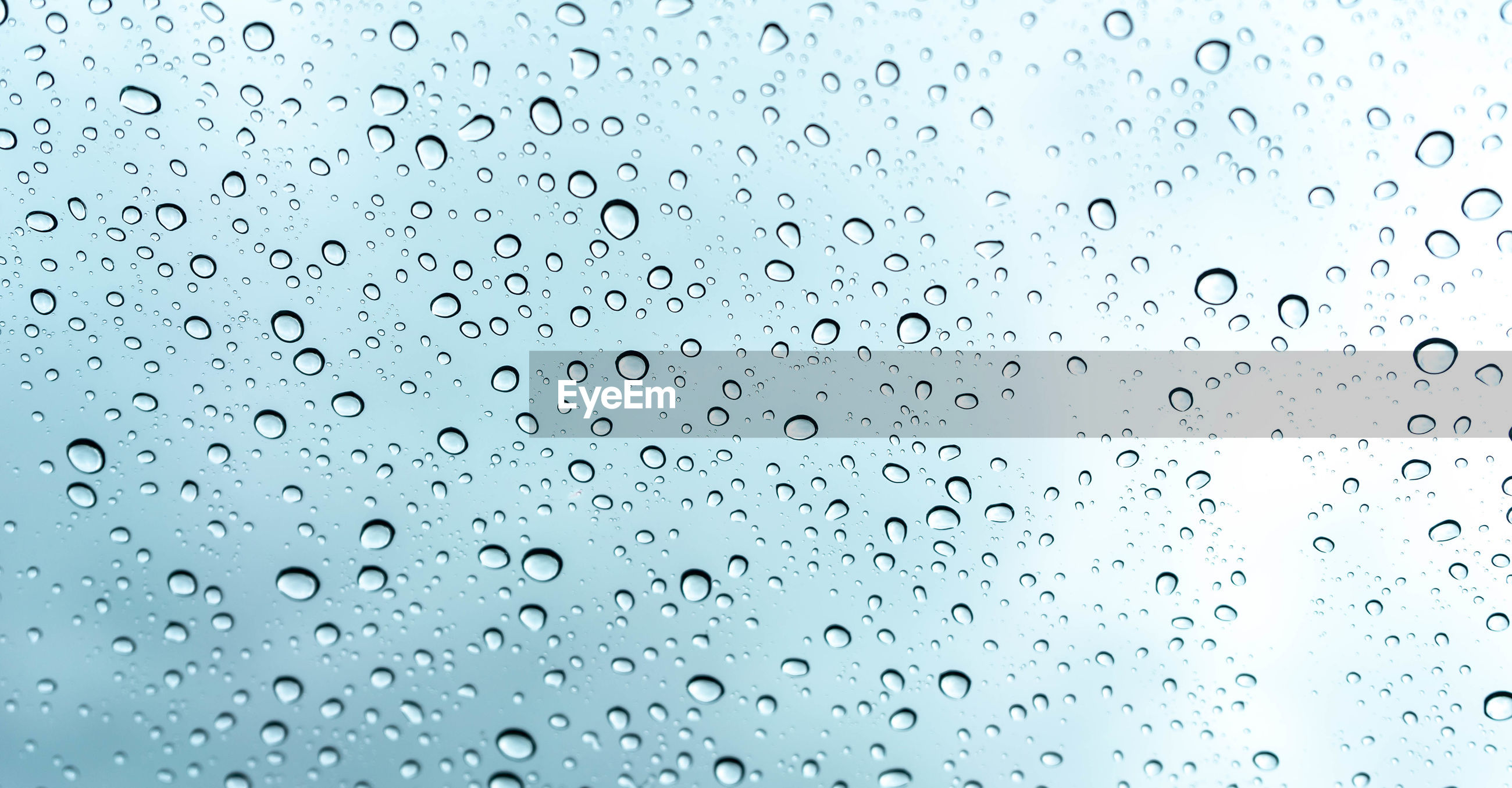 Rain water drop on glass background