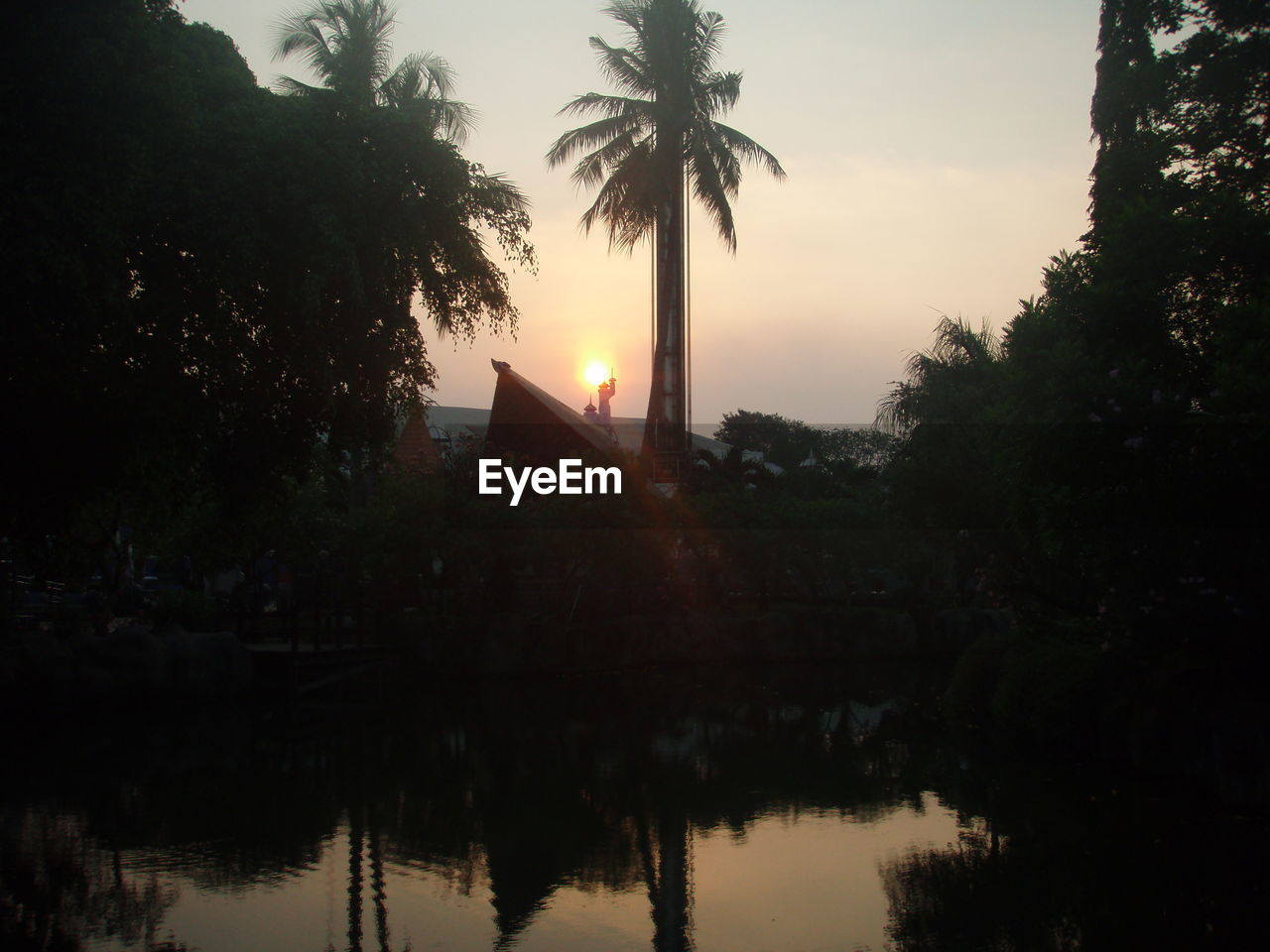 tree, reflection, palm tree, silhouette, sunset, water, no people, nature, growth, beauty in nature, sky, outdoors, architecture, day