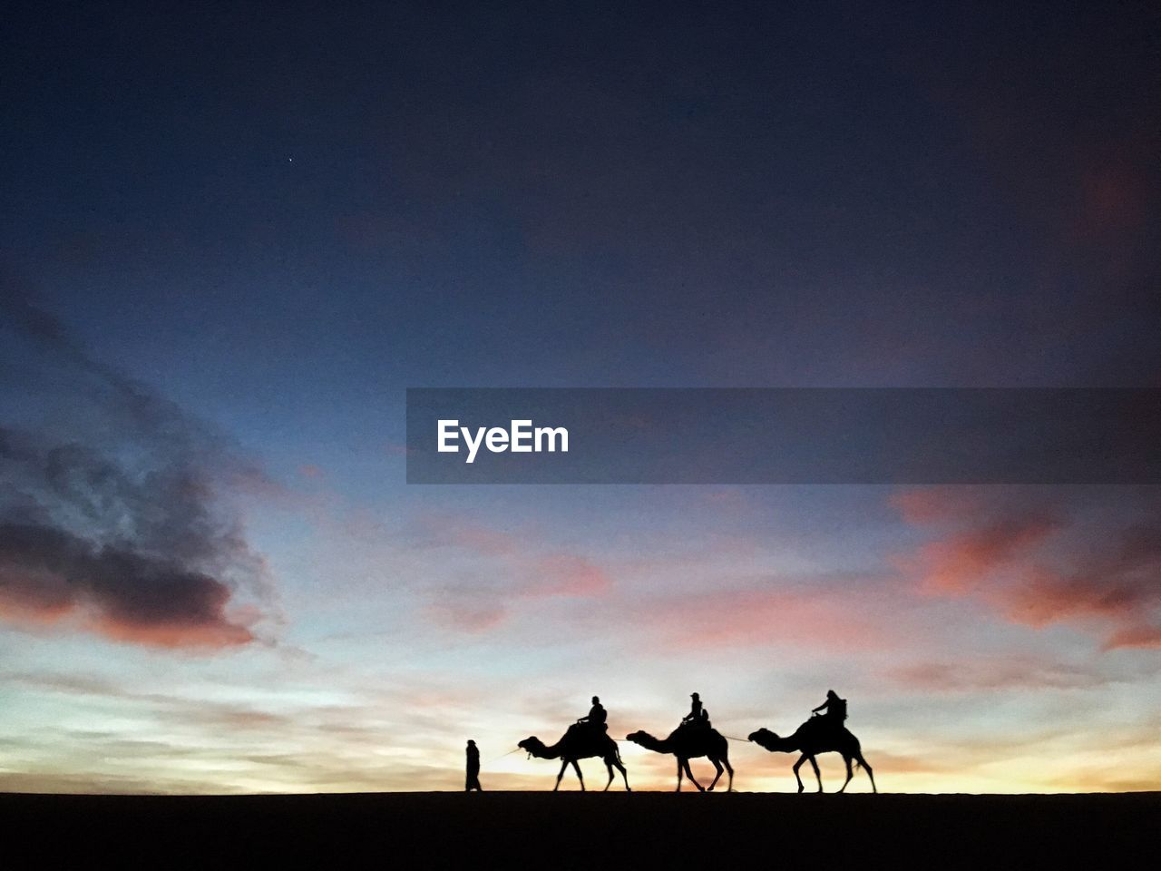 Silhouette People Riding Camels On Desert Against Sky