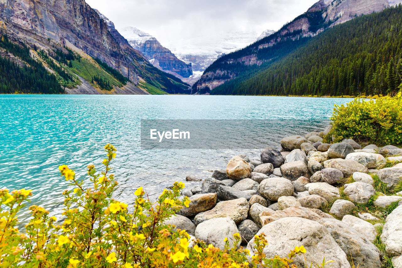 water, scenics - nature, beauty in nature, mountain, plant, rock, nature, tranquil scene, tranquility, lake, rock - object, solid, sky, cloud - sky, day, idyllic, no people, mountain range, non-urban scene, outdoors