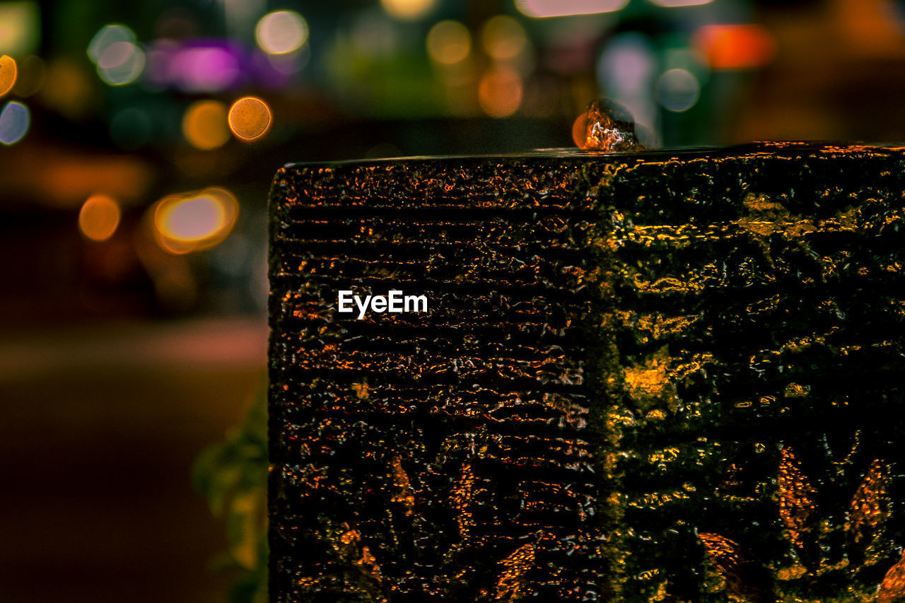 focus on foreground, close-up, no people, night, illuminated, animal, animal wildlife, animals in the wild, animal themes, nature, invertebrate, outdoors, selective focus, insect, lens flare, glowing, pattern, light - natural phenomenon, one animal, tree
