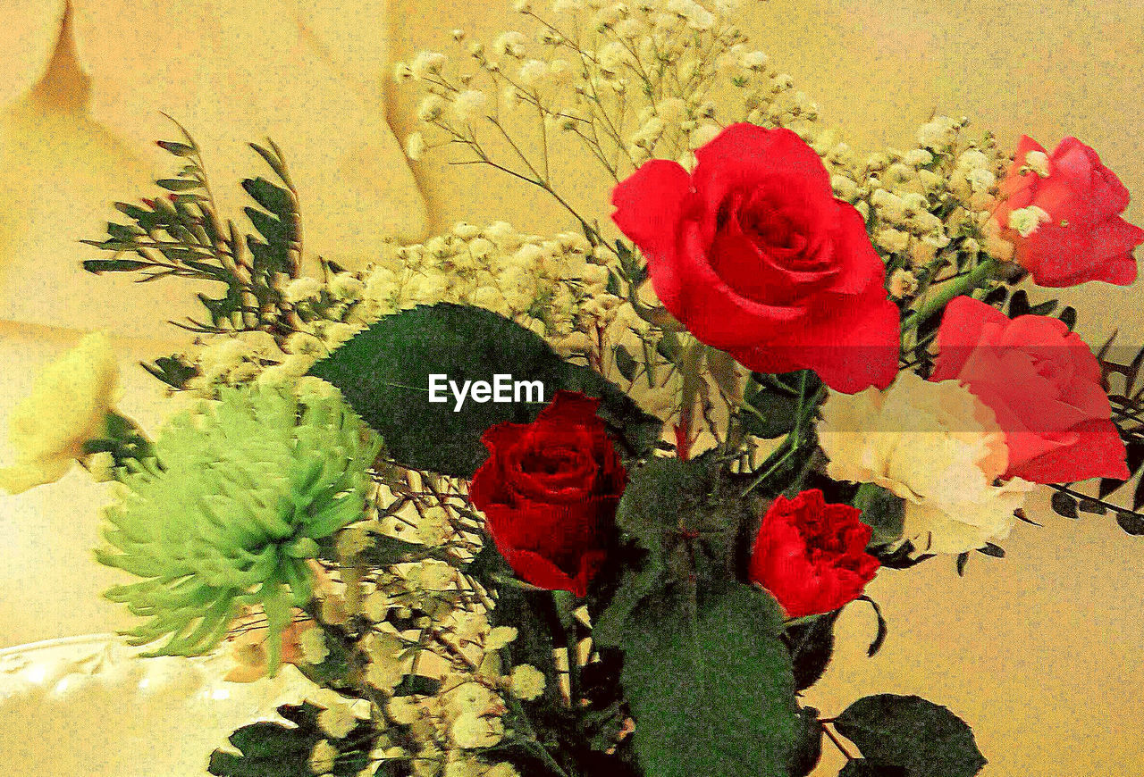flower, rose - flower, bouquet, vase, petal, flower arrangement, indoors, leaf, nature, fragility, no people, flower head, close-up, freshness, plant, beauty in nature, red, growth, day