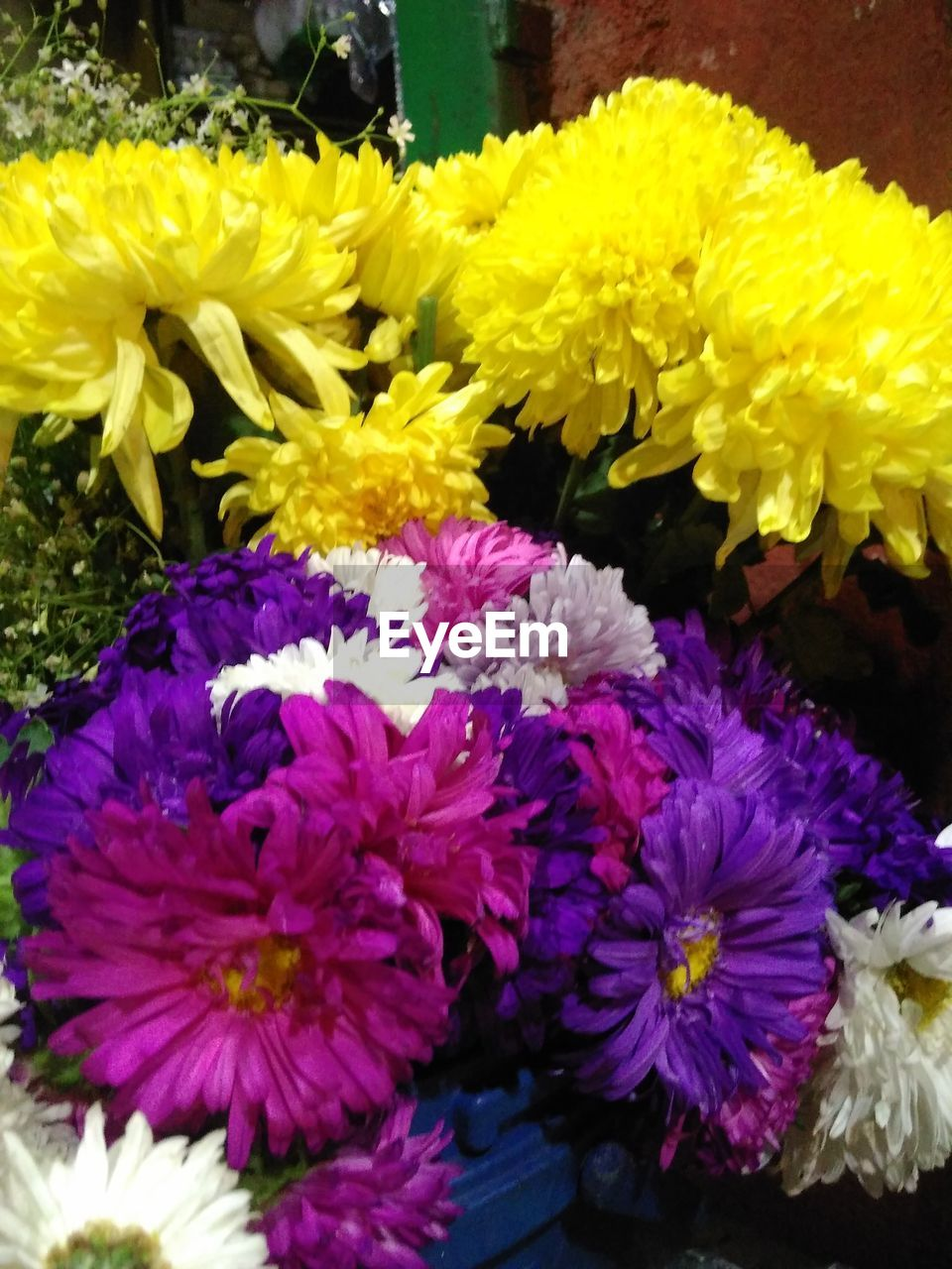 flower, fragility, yellow, freshness, petal, beauty in nature, no people, nature, flower head, growth, close-up, flower market, day, outdoors