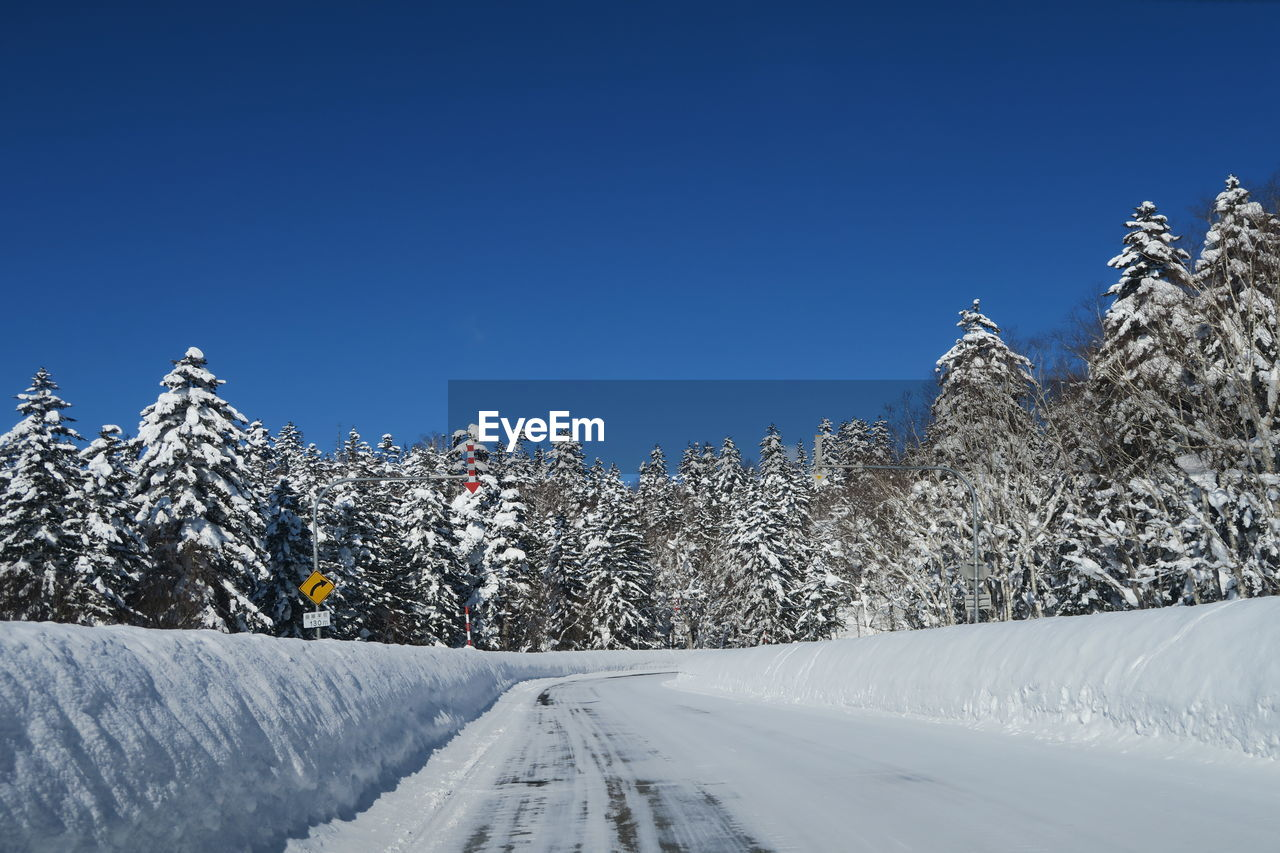 snow, cold temperature, winter, tree, beauty in nature, mountain, sky, nature, plant, scenics - nature, white color, covering, clear sky, day, copy space, sport, snowcapped mountain, winter sport, frozen, outdoors, extreme weather