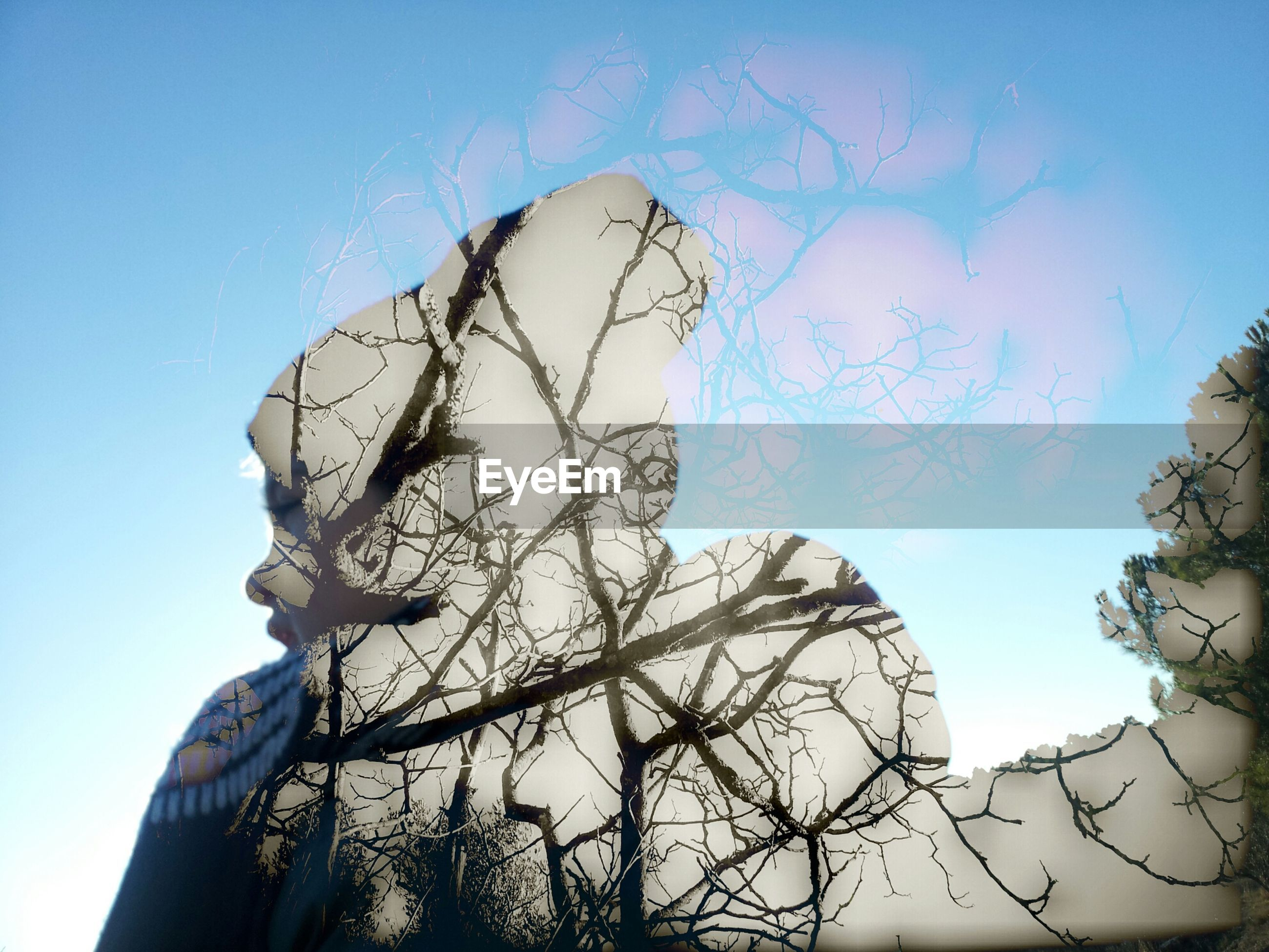 Multiple exposure of bare trees and woman against sky
