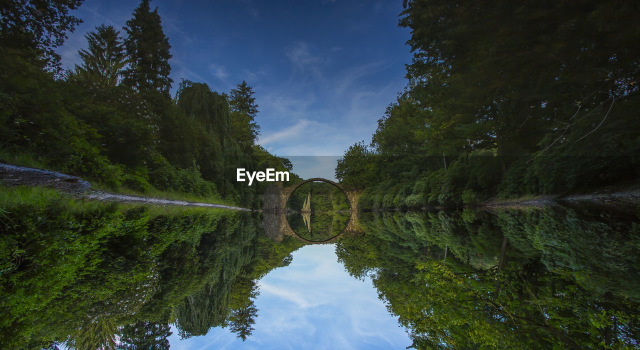 water, plant, sky, tree, reflection, scenics - nature, tranquility, nature, beauty in nature, cloud - sky, tranquil scene, no people, day, waterfront, green color, growth, lake, symmetry, outdoors, flowing water, arch bridge