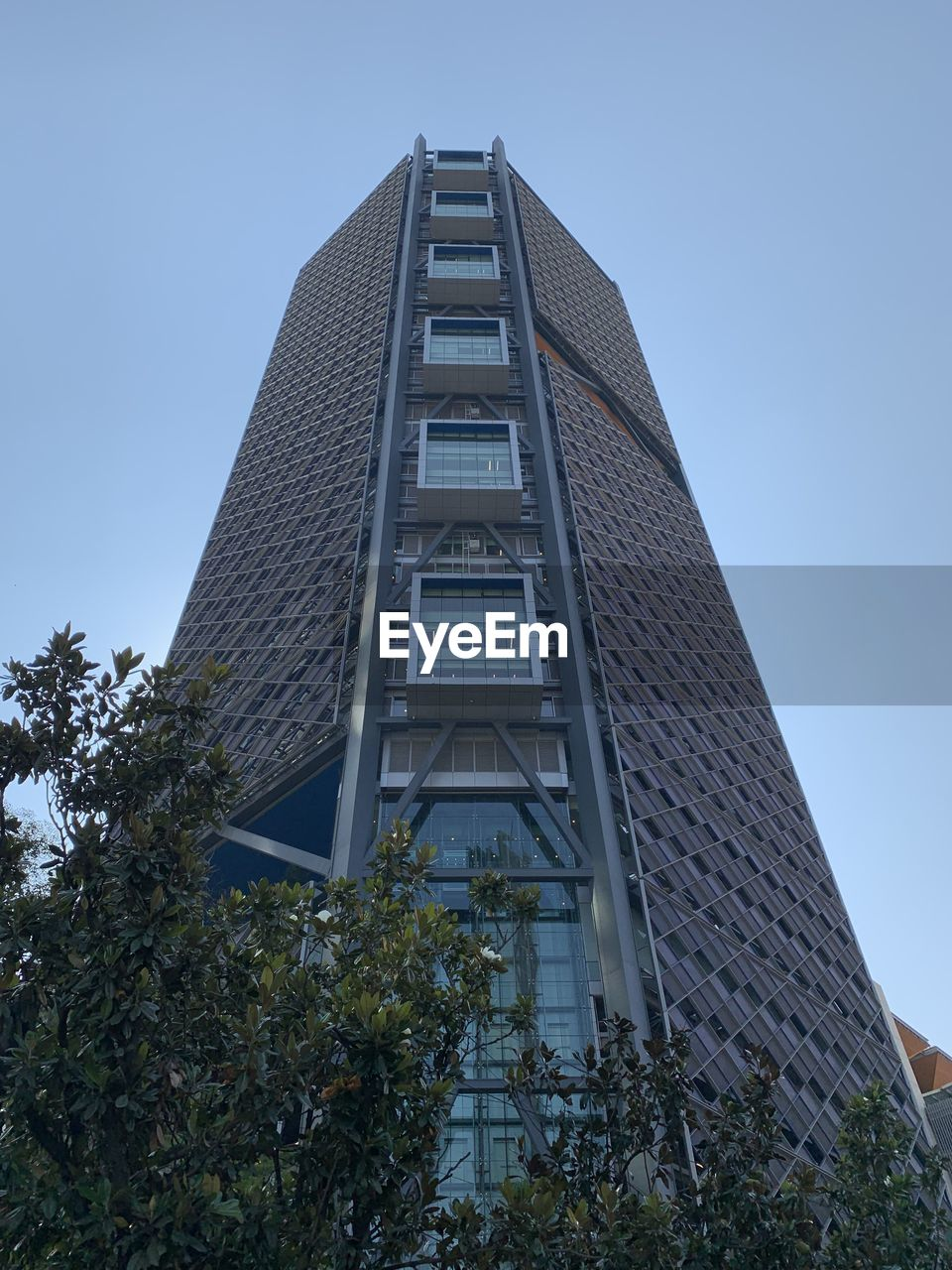 built structure, architecture, low angle view, building exterior, building, plant, tree, sky, city, modern, nature, tall - high, no people, day, tower, office building exterior, clear sky, outdoors, skyscraper, growth, location