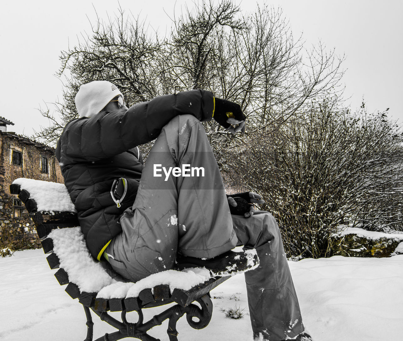 REAR VIEW OF MEN PLAYING WITH SNOW ON TREE