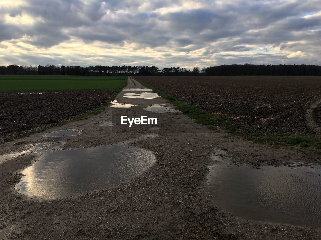 cloud - sky, sky, water, nature, land, landscape, tranquility, scenics - nature, no people, beauty in nature, tranquil scene, dirt, field, day, environment, direction, puddle, rural scene, road, outdoors, mud
