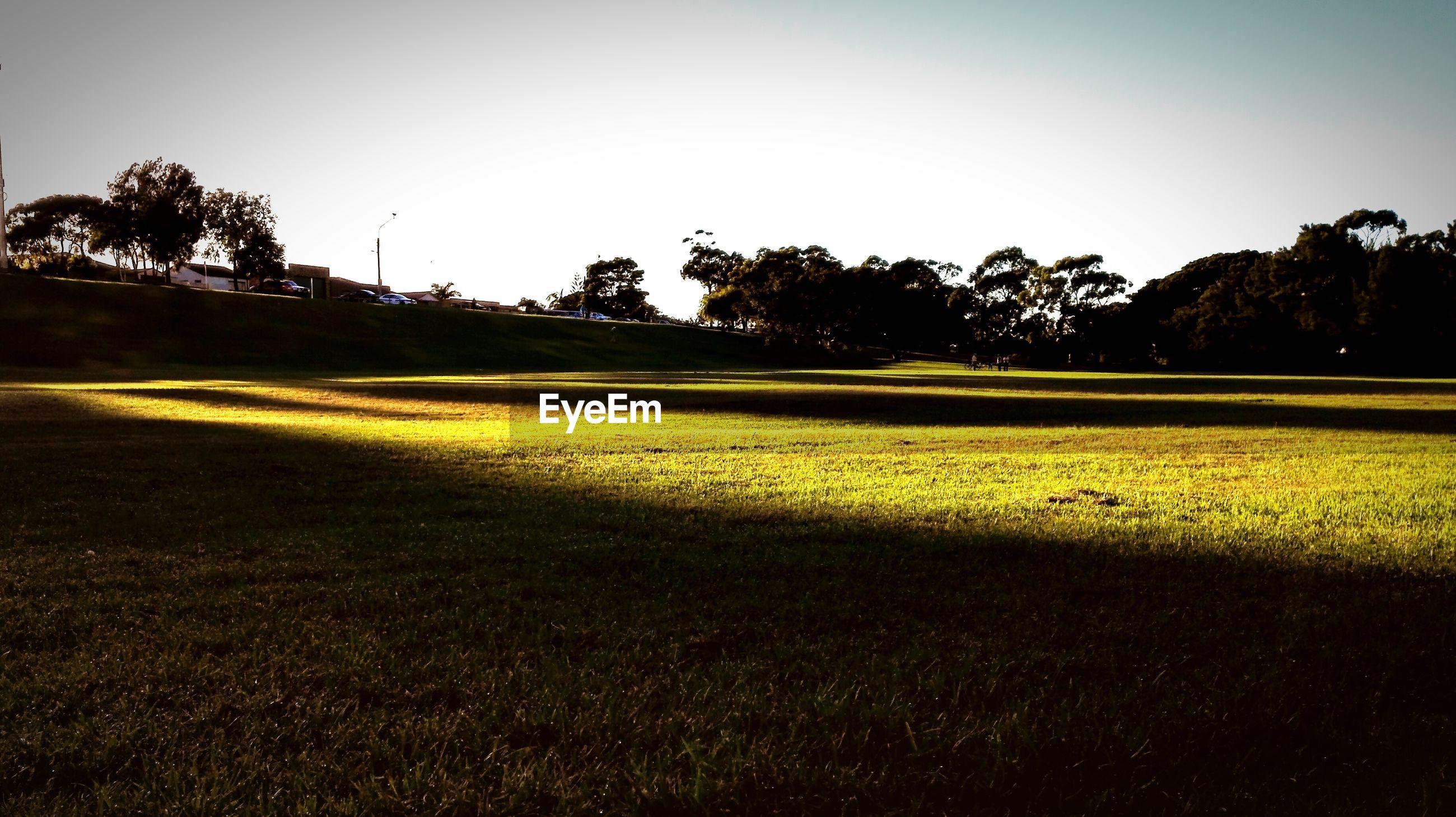 Sunlight falling on kempt field against sky