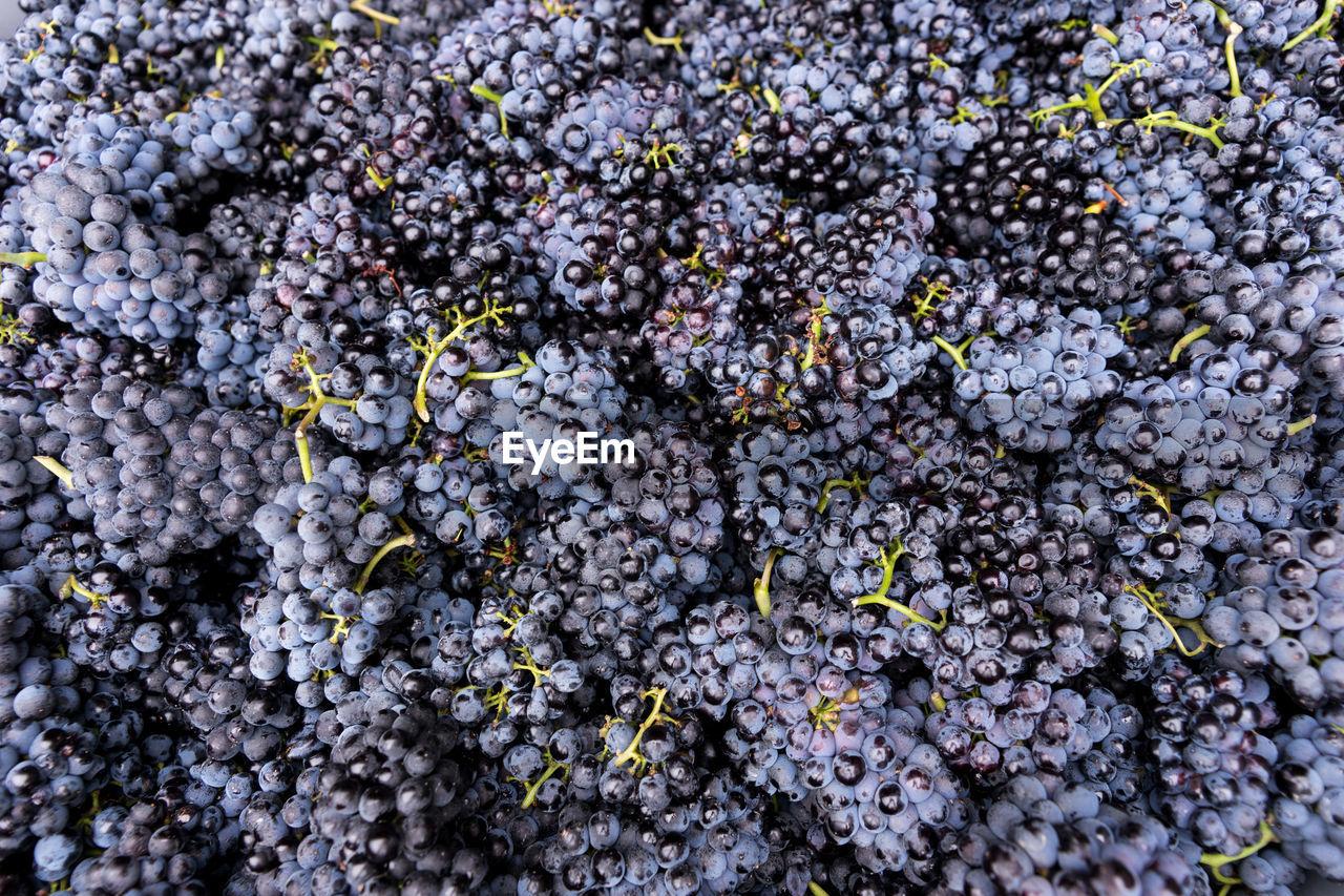 Full frame shot of black grapes