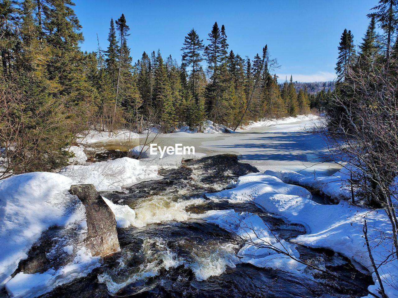 Scenic view of stream amidst trees during winter