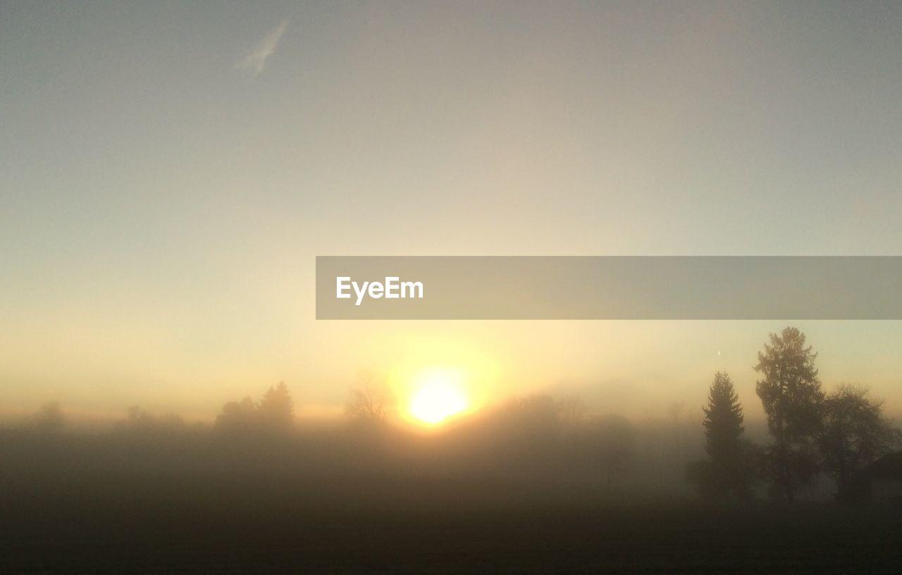 nature, tranquility, tranquil scene, beauty in nature, tree, landscape, scenics, sun, sunset, idyllic, no people, fog, field, outdoors, sunlight, hazy, mist, sky, day