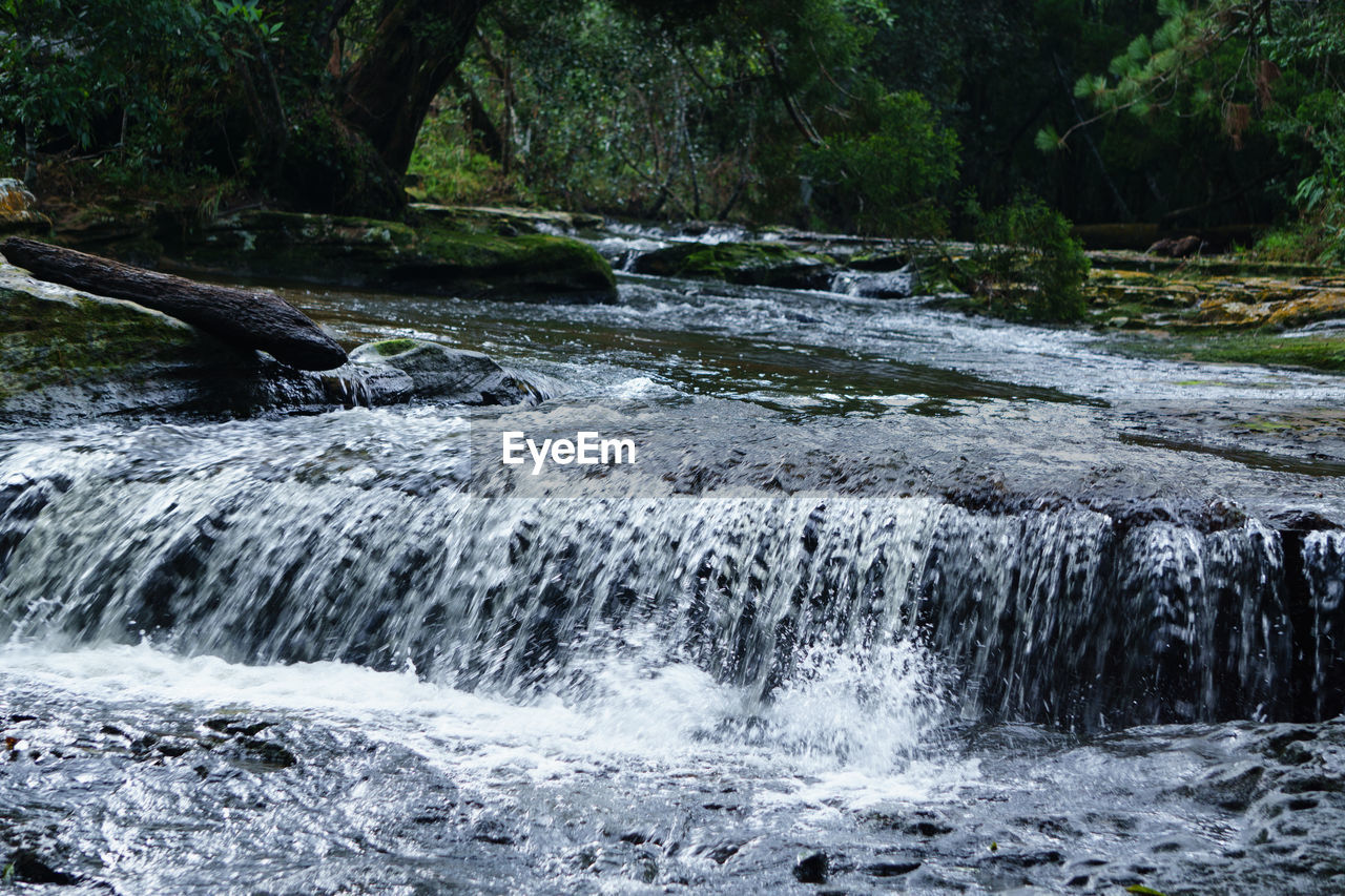 water, nature, motion, beauty in nature, waterfall, no people, scenics, tree, river, outdoors, waterfront, tranquility, forest, day, tranquil scene