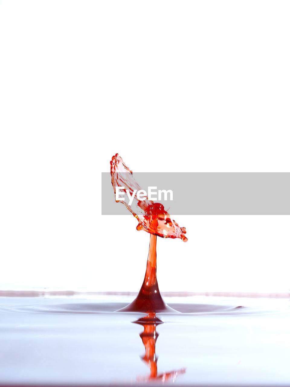 Close-up of red splashing water