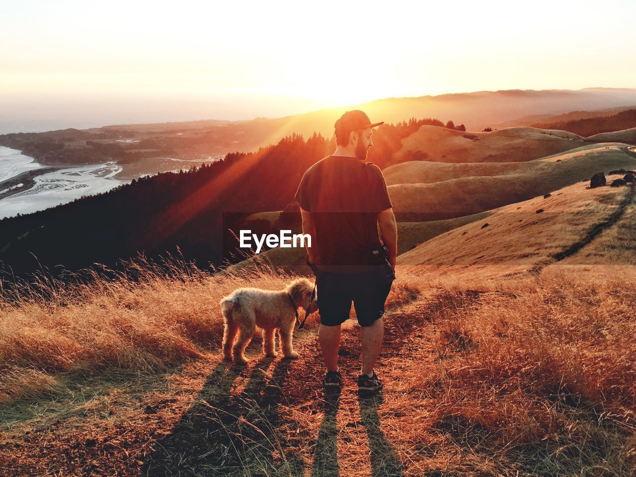 Rear view of man standing with dog on hill during sunset