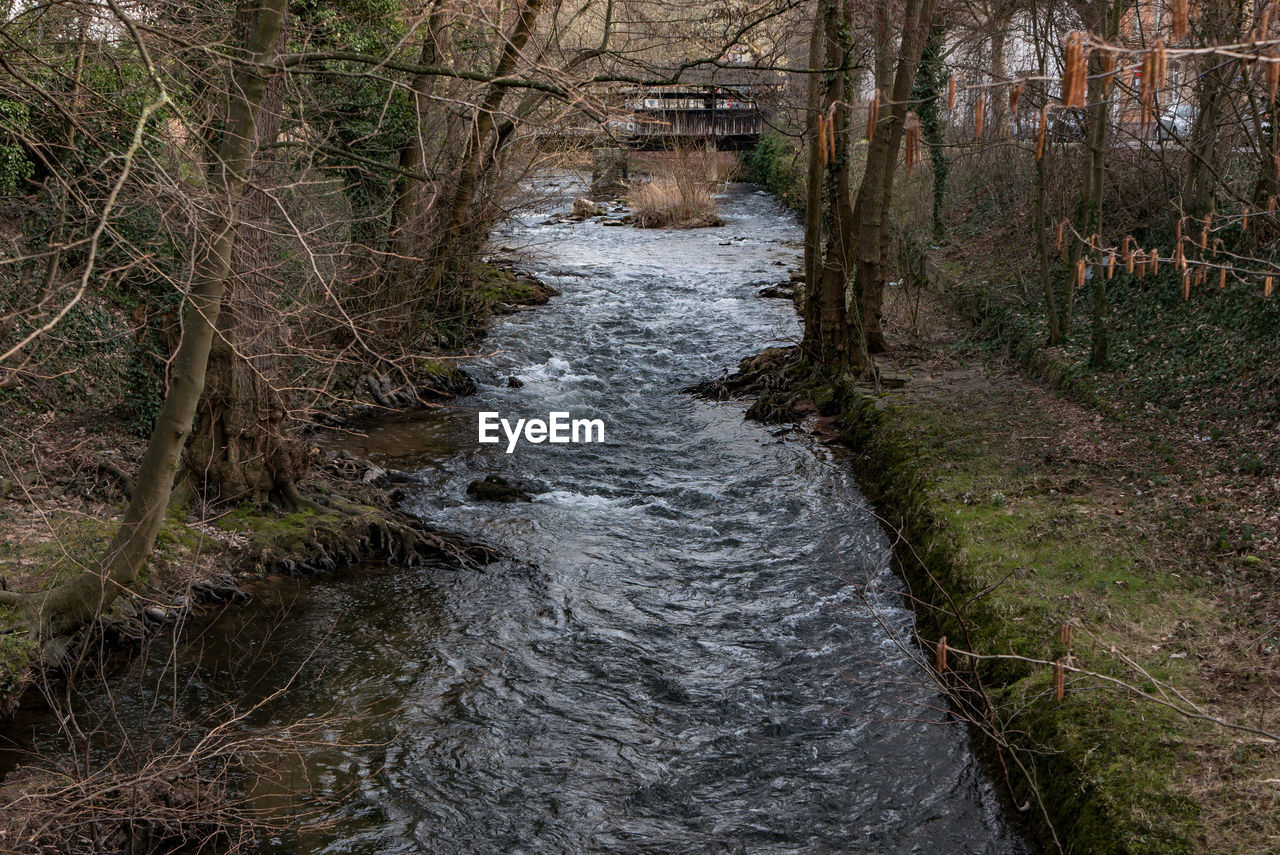 river, tree, no people, outdoors, day, forest, water, nature, bare tree, scenics, landscape, beauty in nature, grass, sky