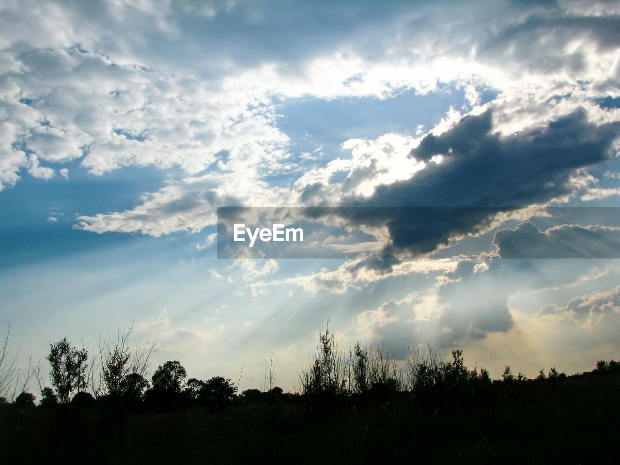 sky, cloud - sky, beauty in nature, tranquility, tranquil scene, scenics - nature, tree, plant, nature, no people, silhouette, landscape, land, environment, non-urban scene, outdoors, sunlight, sunset, field, day