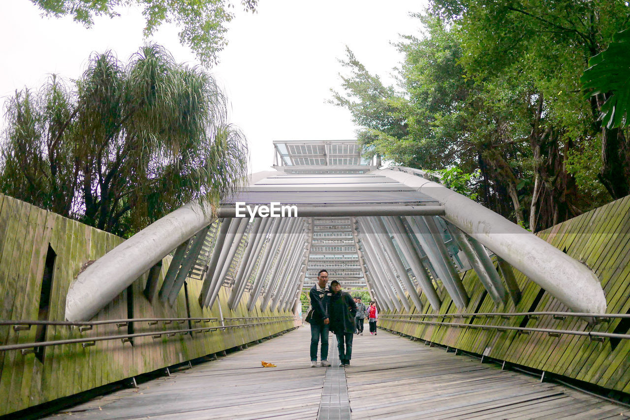 plant, tree, architecture, full length, walking, built structure, men, nature, two people, bridge, people, rear view, sky, connection, day, real people, railing, togetherness, growth, adult, footbridge, bridge - man made structure, couple - relationship, outdoors, positive emotion