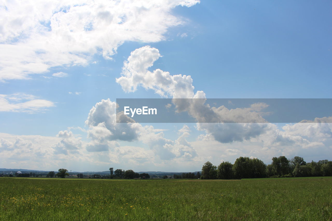 nature, sky, field, beauty in nature, cloud - sky, tranquility, tranquil scene, landscape, scenics, no people, day, tree, outdoors, grass, agriculture, growth, rural scene