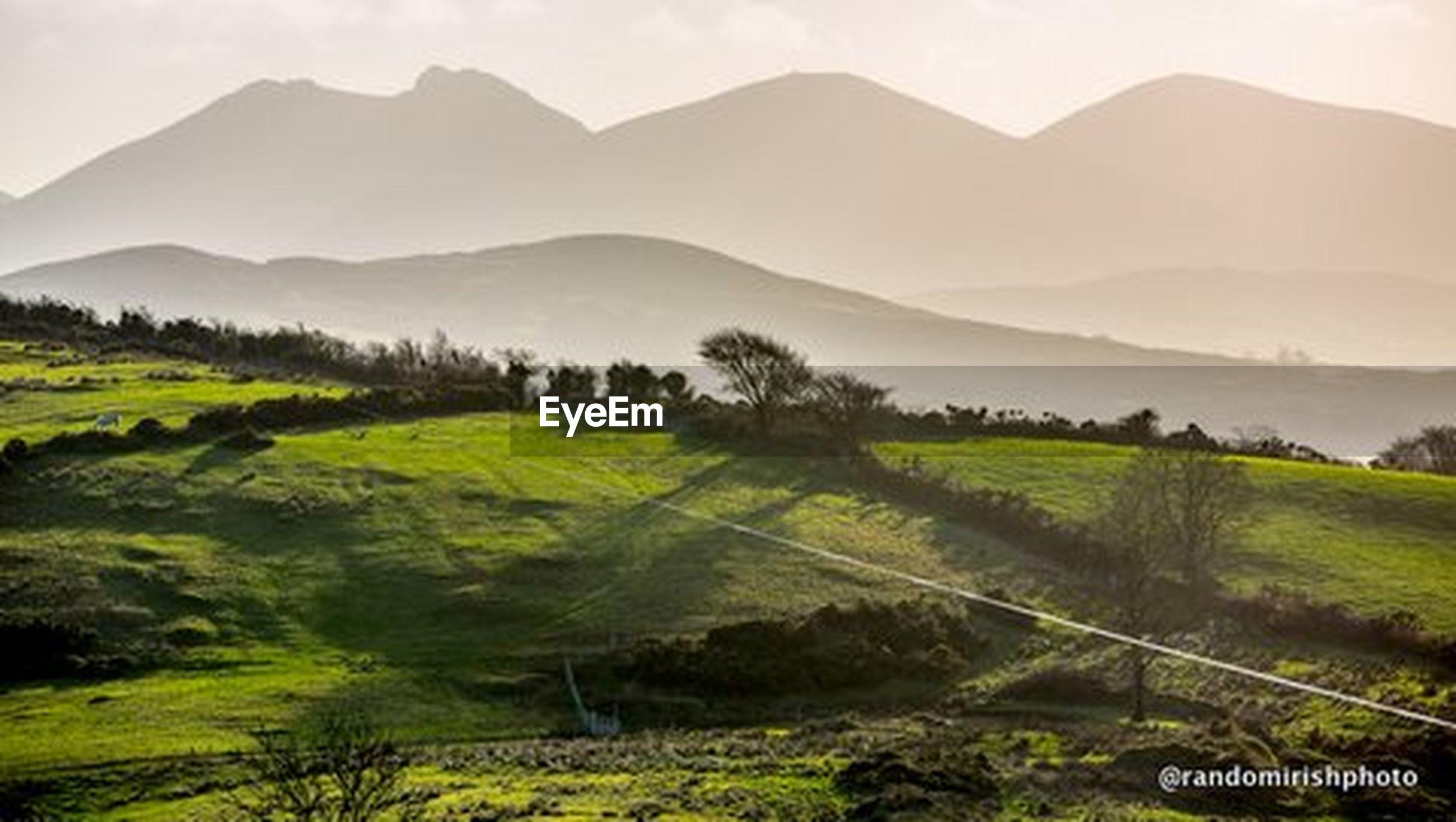 mountain, landscape, tranquil scene, tranquility, scenics, mountain range, beauty in nature, tree, rural scene, nature, field, agriculture, green color, non-urban scene, high angle view, farm, grass, idyllic, sky, remote
