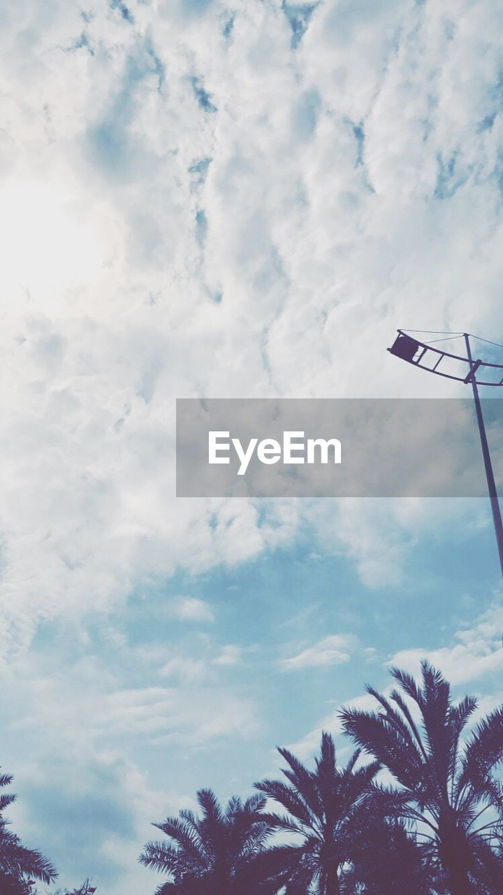 low angle view, cloud - sky, sky, palm tree, flag, day, tree, no people, outdoors, beauty in nature, nature