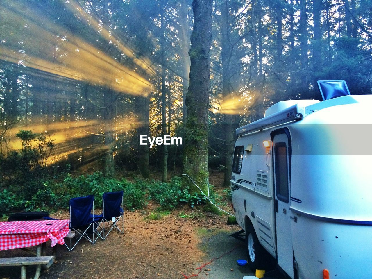Camping van in forest