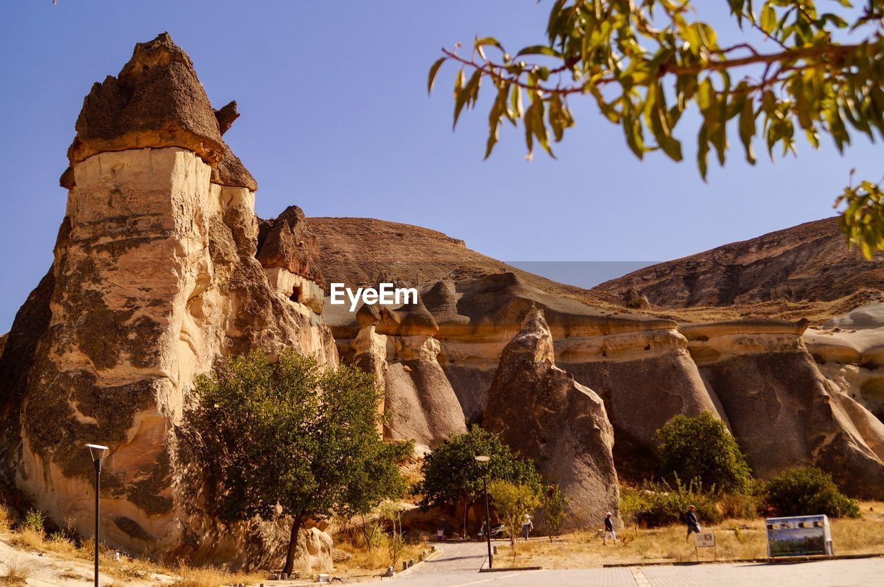 tree, history, nature, plant, architecture, the past, travel, travel destinations, sky, no people, tourism, built structure, rock formation, clear sky, ancient, low angle view, mountain, day, rock, ancient civilization, outdoors, eroded