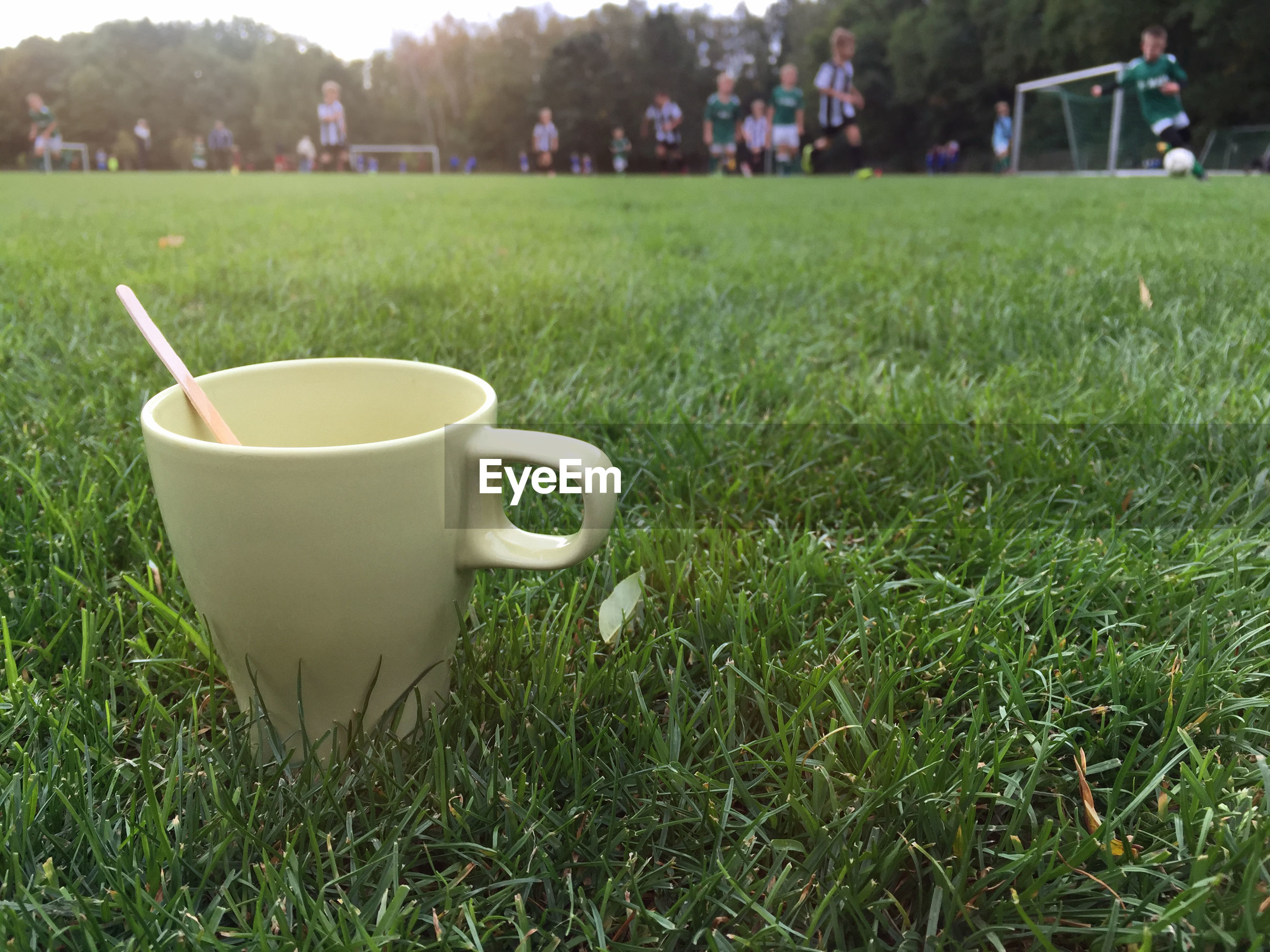 Coffee cup on grassy field