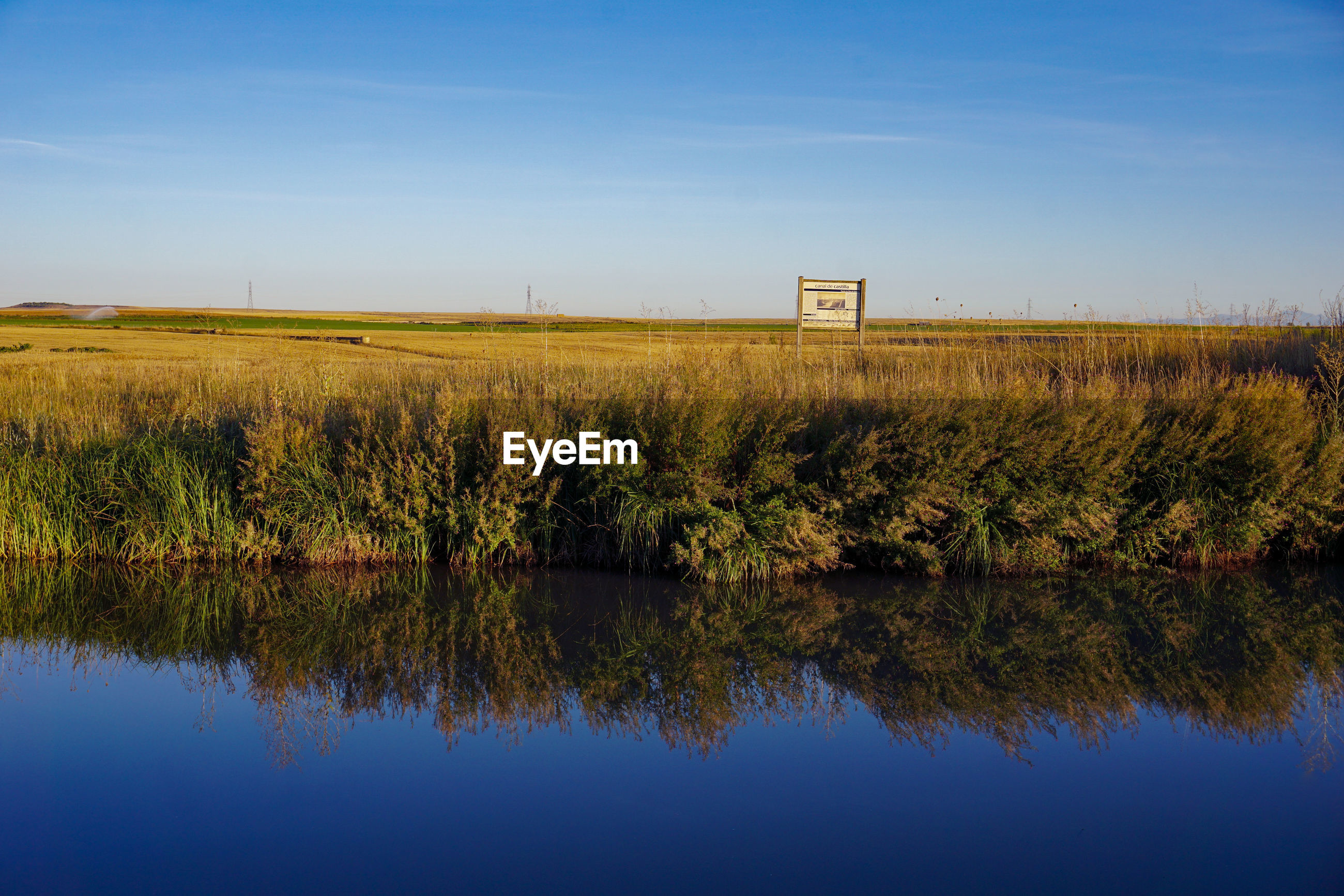 SCENIC VIEW OF GRASSY FIELD BY LAKE AGAINST SKY