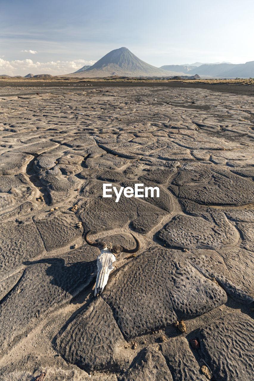 AERIAL VIEW OF DESERT LAND