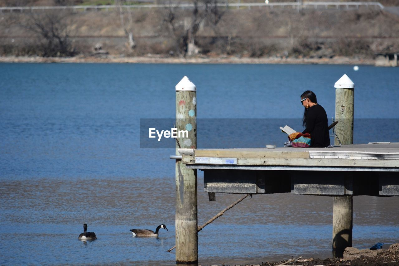 water, lake, real people, day, one person, animals in the wild, outdoors, animal themes, nature, bird, full length, retaining wall, young adult, people