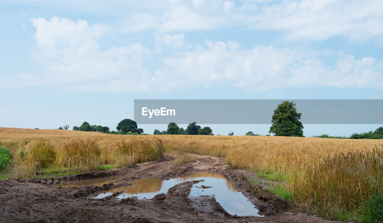 SCENIC VIEW OF Mud Puddle In FIELD AGAINST CLOUDY SKY