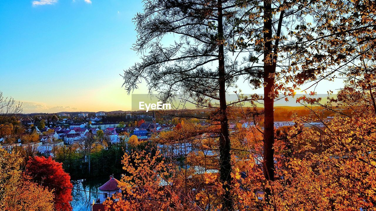 autumn, tree, beauty in nature, change, nature, scenics, orange color, leaf, outdoors, tranquility, tranquil scene, no people, sunset, sky, growth, sunlight, branch, day, flower, bare tree, building exterior