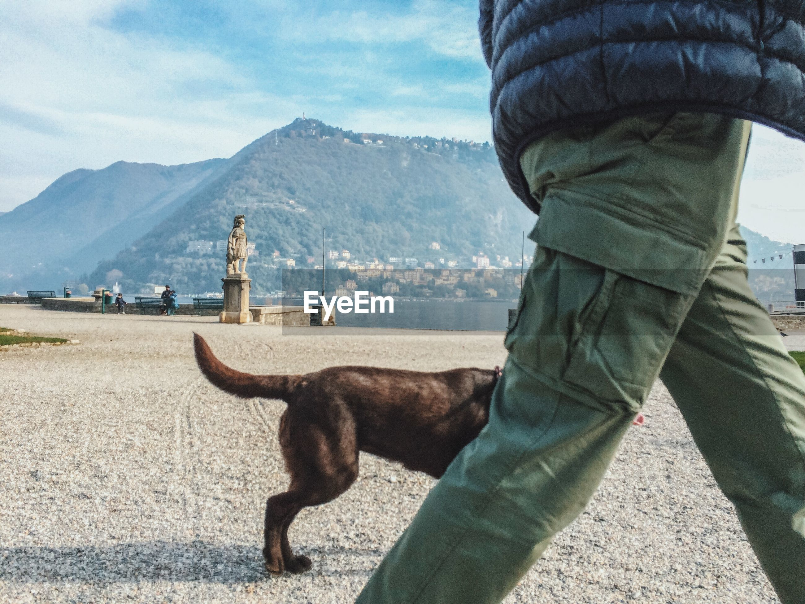 Midsection of man walking with dog on field against mountains