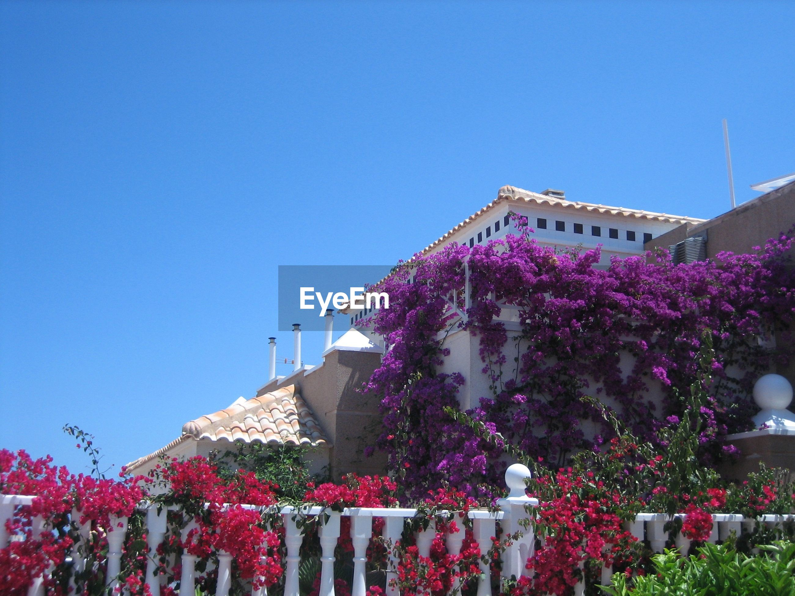 LOW ANGLE VIEW OF BUILT STRUCTURES AGAINST CLEAR BLUE SKY