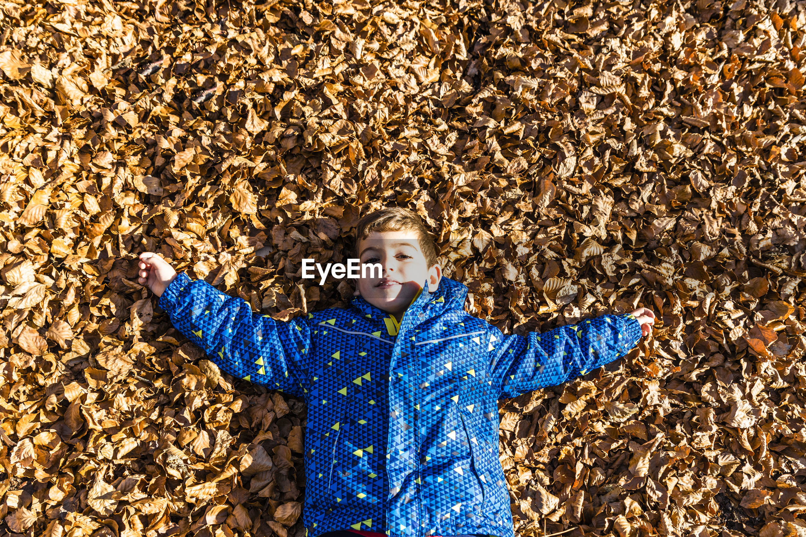 High angle portrait of boy lying on dry leaves during autumn