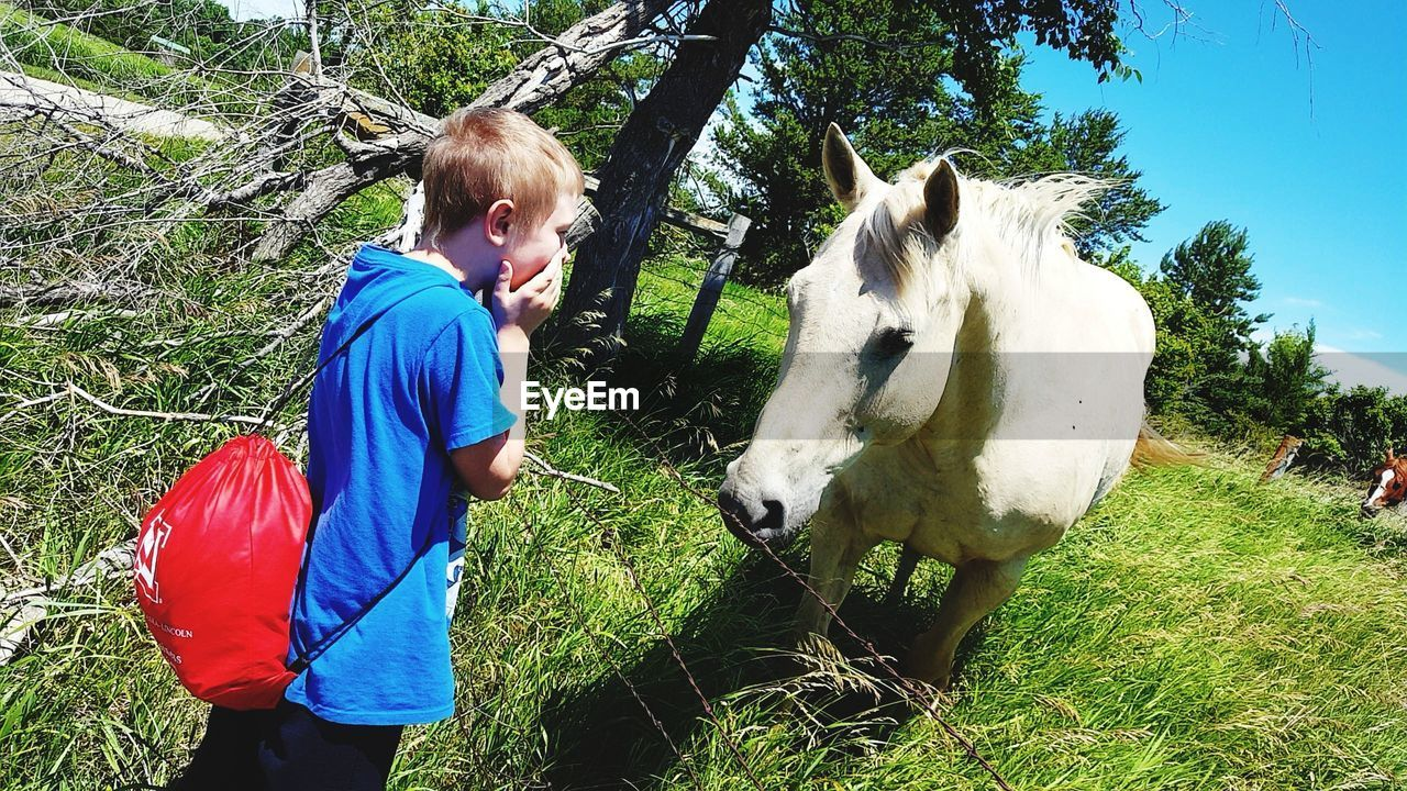 Side view of boy with hands covering mouth looking at horse on field