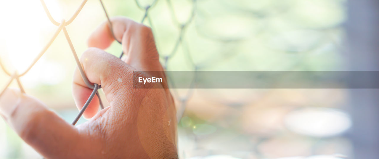 human hand, hand, one person, human body part, focus on foreground, real people, holding, selective focus, day, close-up, lifestyles, body part, nature, leisure activity, sunlight, adult, outdoors, finger, human finger, human face