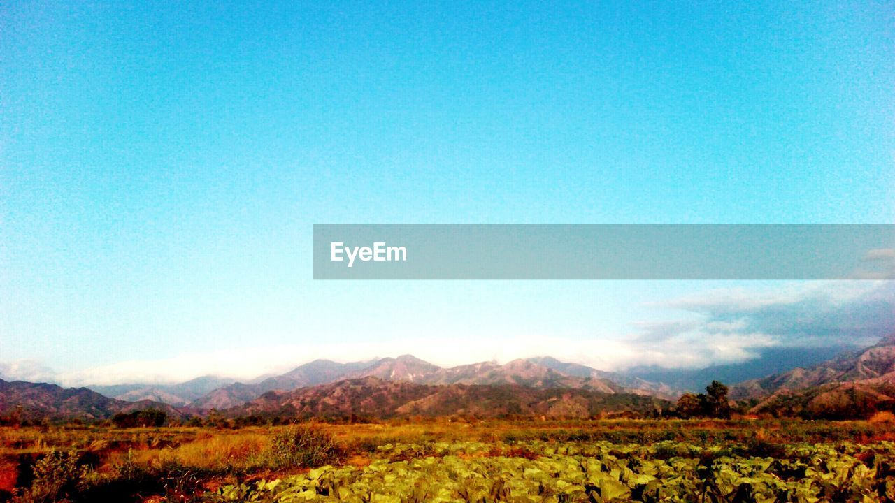 nature, landscape, mountain, field, beauty in nature, scenics, blue, growth, tranquility, agriculture, outdoors, mountain range, no people, plant, clear sky, sky, tree, day